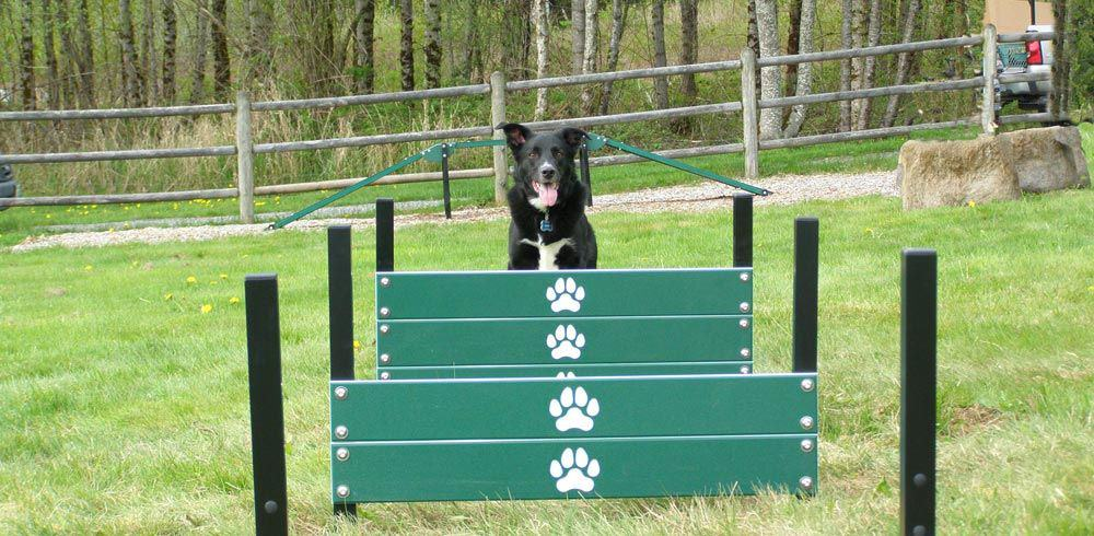 heavy duty dog park equipment