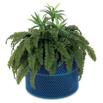 anova furnishings planters