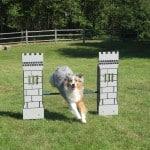 6531-Castle Jump Bar